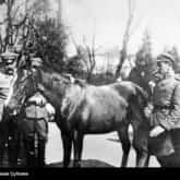 Naczelnik Państwa Józef Piłsudski z Kasztanką i źrebakiem. Źródło: Narodowe Archiwum Cyfrowe